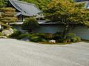Japánkert képek az internetről - 600x450 pixel - 144820 byte