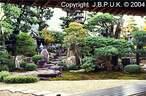 Japánkert képek az internetről - 650x428 pixel - 122834 byte