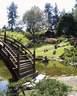 Japánkert képek az internetről - 500x625 pixel - 130257 byte