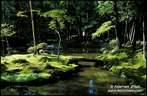 Japánkert képek az internetről - 715x468 pixel - 152641 byte