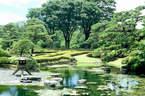 Japánkert képek az internetről - 454x300 pixel - 89257 byte