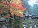 Japánkert képek az internetről - 1024x768 pixel - 413992 byte