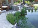 kerti tó kerttervezés álomkert kertépítés szép kert, szép kertek pihenőkert - 1024x768 pixel - 273597 byte