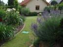 veresegyházi kert 2009, 06, 10 - 1024x768 pixel - 368981 byte