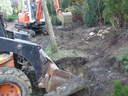 Bobcat minikotró fa és növény átültetés - 1024x768 pixel - 374080 byte