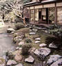 Japánkert képek az internetről - 561x600 pixel - 167821 byte