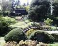Japánkert képek az internetről - 640x512 pixel - 135717 byte