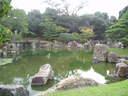 Japánkert képek az internetről - 640x480 pixel - 136957 byte
