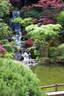 Japánkert képek az internetről - 360x540 pixel - 110010 byte