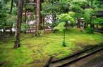 Japánkert képek az internetről - 540x356 pixel - 110702 byte