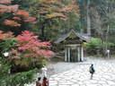 Japánkert képek az internetről - 1024x768 pixel - 392997 byte