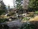 Japánkert képek az internetről - 200x150 pixel - 52944 byte