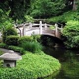 Japánkert képek az internetről - 400x300 pixel - 63882 byte