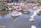 Japánkert képek az internetről - 932x640 pixel - 104970 byte