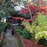 Japánkert képek az internetről - 640x480 pixel - 142936 byte