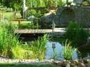 kerti tó kertervezés álomkert kertépítés szép kert, szép kertek pihenőkert - 1024x768 pixel - 357511 byte